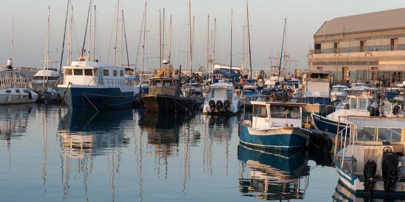The Old Jaffa Port
