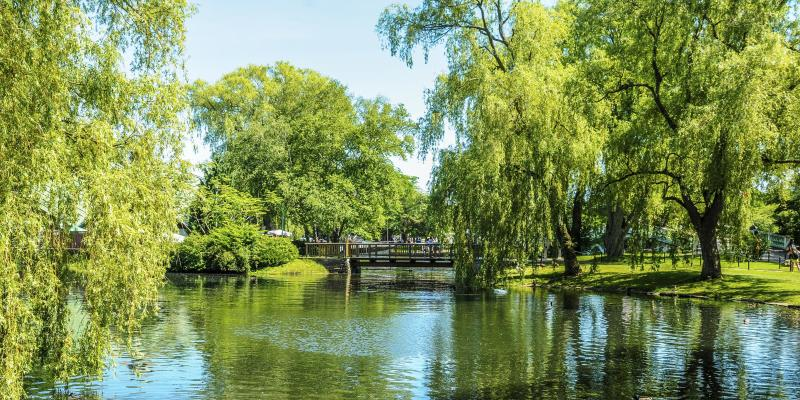 Toronto Island Park – Toronto Islands