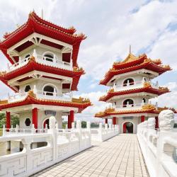 הגן הסיני
