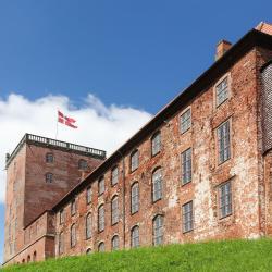 Koldinghus Royal Castle - Ruin - Museum, וויין