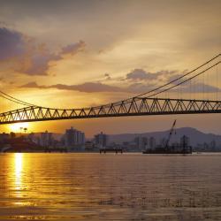 Cầu Hercilio Luz