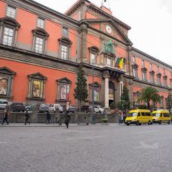 המוזיאון הארכאולוגי הלאומי