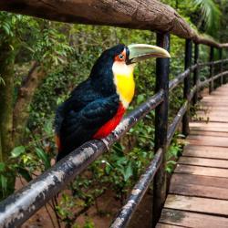 Zoológico Bosque Guarani