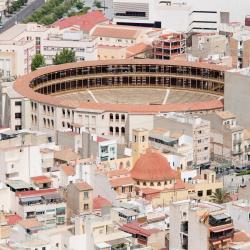 Trường đấu bò Alicante