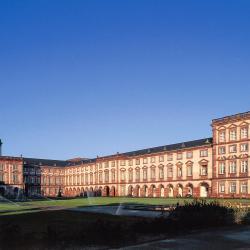 Universidade de Mannheim