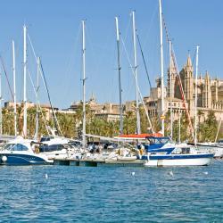 ميناء بَلما
