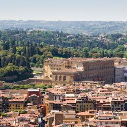 Cung điện Pitti