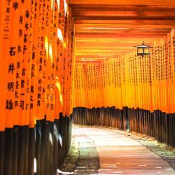 Templo Fushimi Inari Taisha