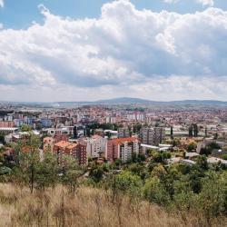 Mitrovica County