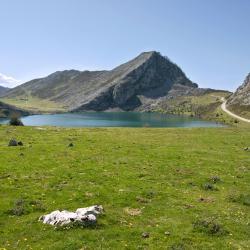 Asturias 9 campings