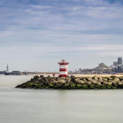 דרום-הולנד 12 פארקי נופש