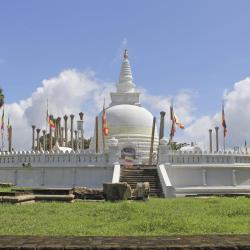 Anuradhapura District
