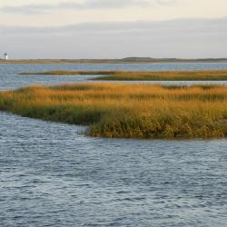Península de Cape Cod
