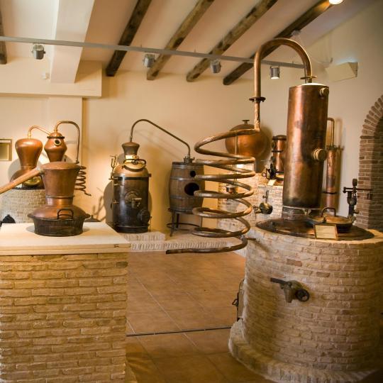 מוזיאון היין בברדולינו