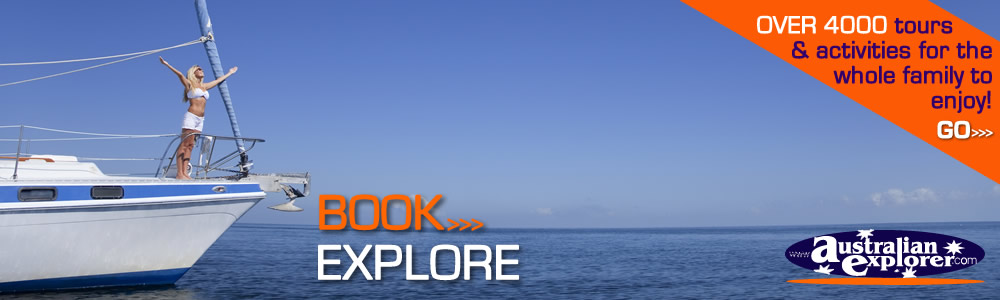 Activities, Experiences and Tours