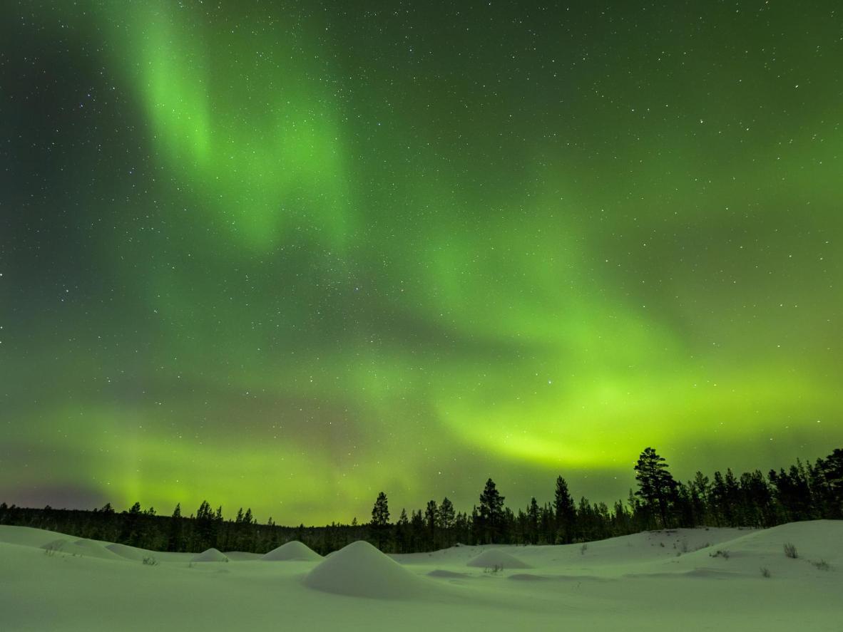 Faça um passeio de carro pela neve em Ivalo