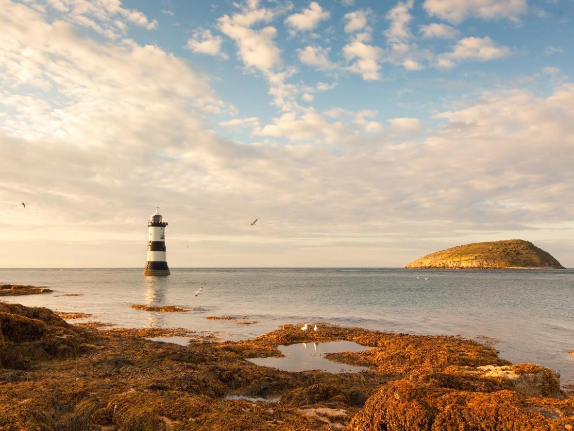 Puffin Island, no País de Gales