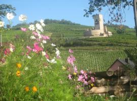 Eco-Logis du Vignoble, Katzenthal
