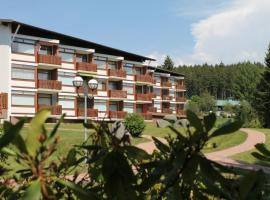 Ferienhaus Schluchsee, Schluchsee