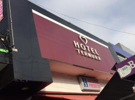 Hotel Ternura (Adults Only), São Miguel Paulista