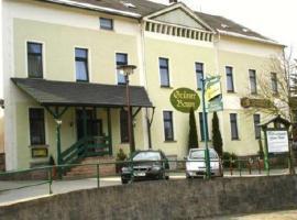 Hotel und Landgasthof Grüner Baum, Breitenbrunn
