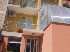 Guest Accommodation Todor, Niš