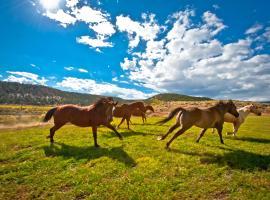 Boulder Mountain Guest Ranch, Boulder Town
