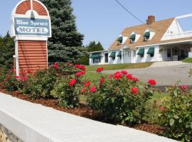 Blue Spruce Motel & Townhouses, Plymouth