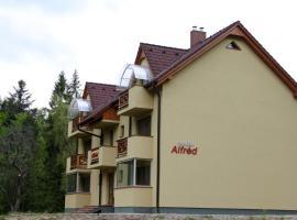 Penzión Alfréd, Plavnica