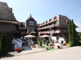 Viking Hotel, Gárdony