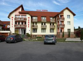 Hotel Mures, Topliţa