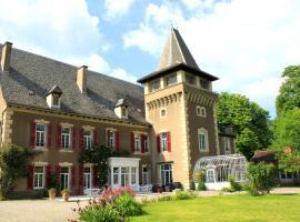 Chambres d'Hôtes Château de Viviez, Viviez
