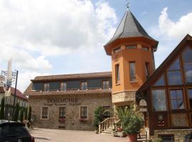 Dohlmühle Restaurant und Gästehaus, Flonheim