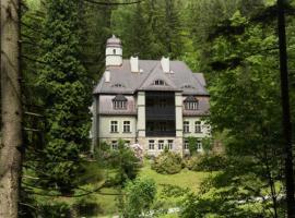Villa Pepita, Miedzygorze