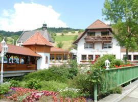 Ludinmühle, Freiamt