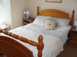 Trelawney Guest House, Falmouth