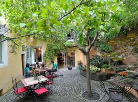 Chambres d'Hôtes Le Petit Siam, Clermont-Ferrand