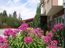 Guest House Zodiac, Samokov