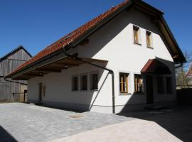Apartments Vrdjan, Cerknica