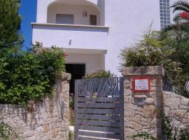 B&B Corallo, Alliste