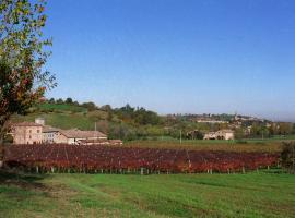 Agriturismo San Polo, Castelvetro di Modena
