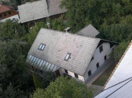 Guesthouse Hribar, Brezje
