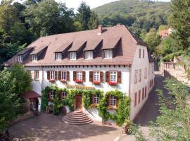 Die Hirschgasse Heidelberg, Heidelberg