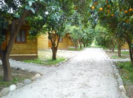 Yesil Bahce Bungalow - Ahsap Evler, Yaniklar