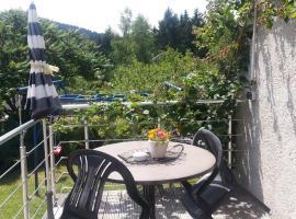 Ferienwohnung Steinbacher, Amtsberg