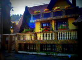Pension Casa Aurora, Vama