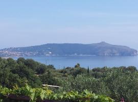 Agriturismo Valle di Marco, Caprioli