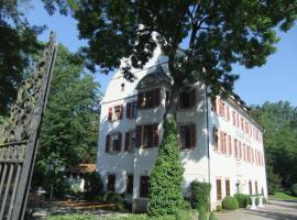 Schloss Lehen, Bad Friedrichshall