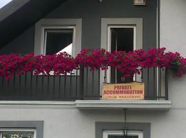 Private accommodation Lidija Rakočević, Kolašin
