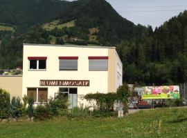 Apartment Blumenmosaik, Flattach